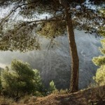 AWOL Granada Mountains (21)