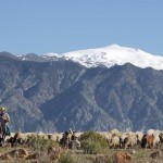 AWOL Granada Mountains (22)