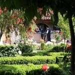 Chapiteles beautiful Gardens