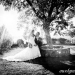 Sun shining on the Happy Couple