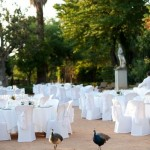 AWOL Weddings Granada Spain