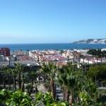 AWOL Granada Tropical Coast