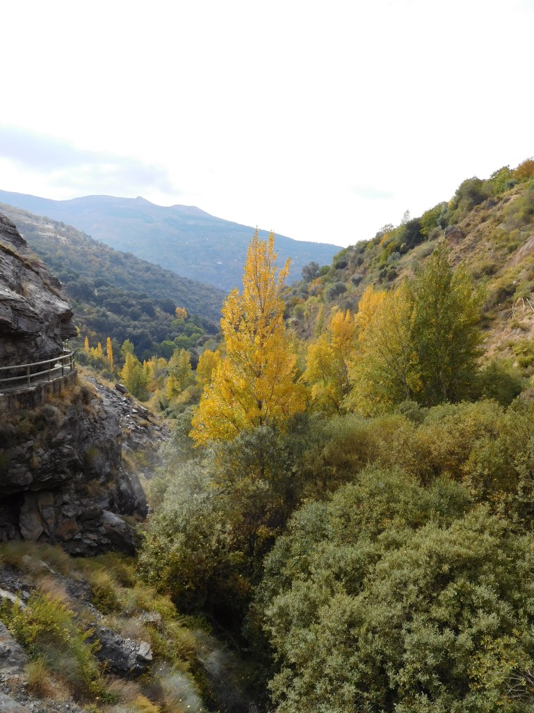 Guejar Sierra to Dehesa de Camarate with Arquenatura, Granada,Spain