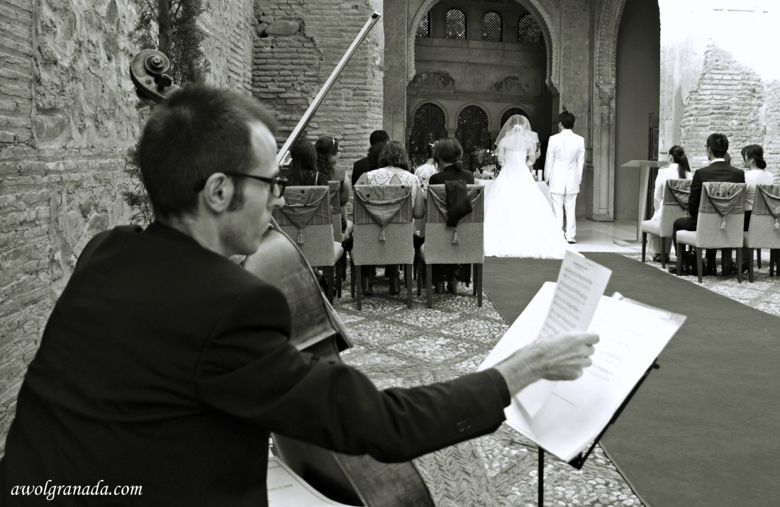 The musician, Cellist, weddings, Granada, Andalucia, Spain.
