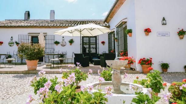 Patio in Hotel Fuente del Sol