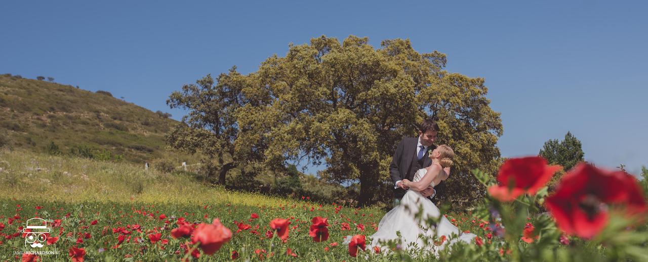 Photos in the Poppy Fields