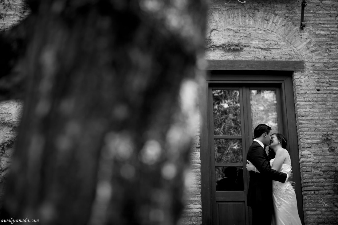 The Happy Couple Wedding Photo's AWOL Granada Wedding Planner Granada Spain