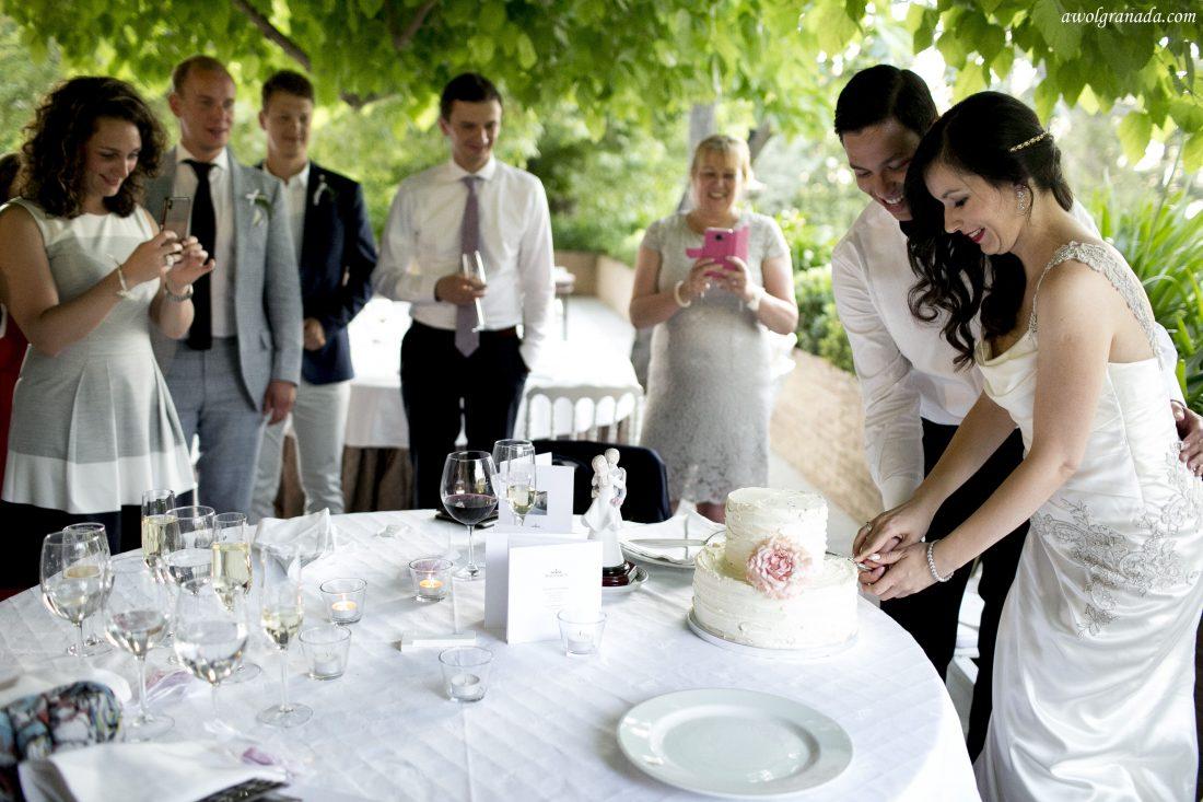 Cake Cutting Wedding Photo's AWOL Granada Wedding Planner Granada Spain